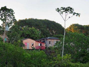 Houses in Humaitá